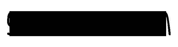 salihparlak.com